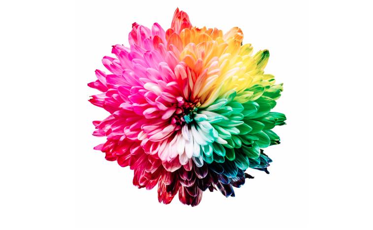 i colori nel marketing